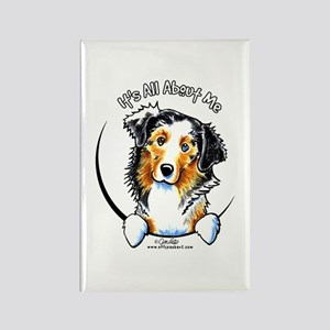 Australian Shepherd IAAM Rectangle Magnet